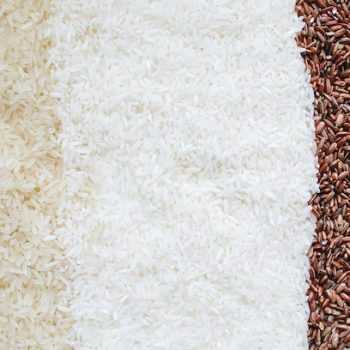rice-analysis-berlin-laboratory copy